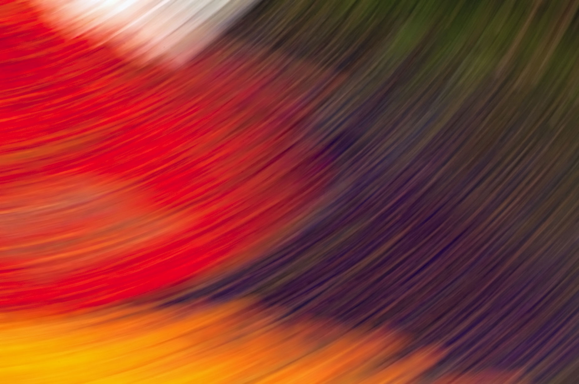 Abstract-Art-Red-Colorful-Eden-Laria-Saunders.jpg